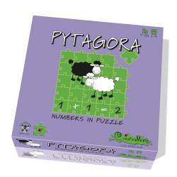 PYTAGORA 5-99 ANNI
