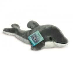 Teddy delfino dai 3 anni