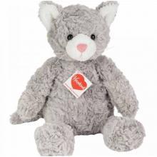 Gatto Minou Teddy +1 anno