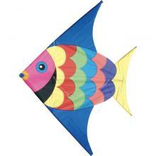 Aquilone Pesce +5 anni